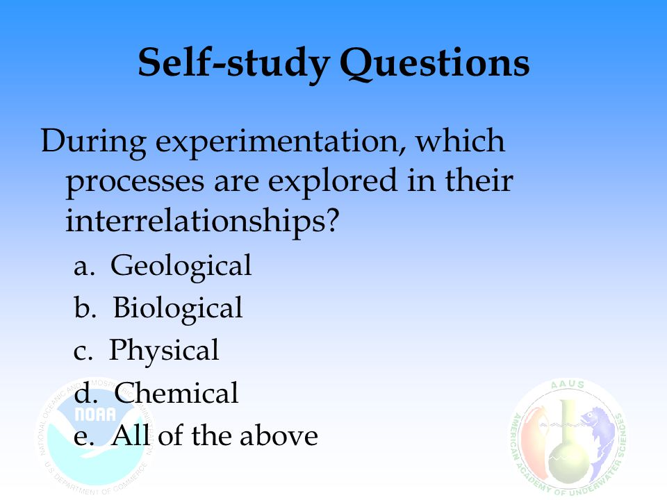 Self-study Questions During experimentation, which processes are explored in their interrelationships.
