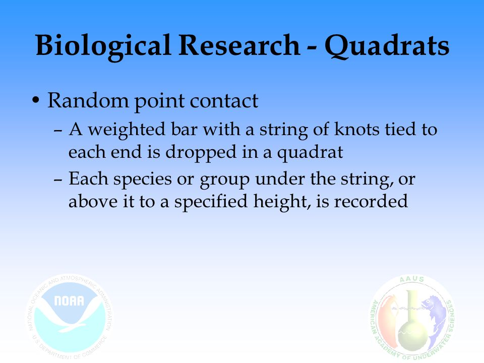 Random point contact –A weighted bar with a string of knots tied to each end is dropped in a quadrat –Each species or group under the string, or above it to a specified height, is recorded