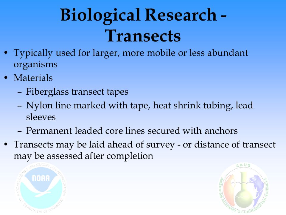 Biological Research - Transects Typically used for larger, more mobile or less abundant organisms Materials –Fiberglass transect tapes –Nylon line marked with tape, heat shrink tubing, lead sleeves –Permanent leaded core lines secured with anchors Transects may be laid ahead of survey - or distance of transect may be assessed after completion