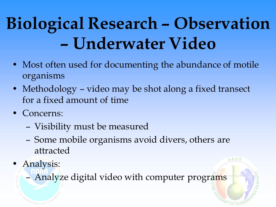 Biological Research – Observation – Underwater Video Most often used for documenting the abundance of motile organisms Methodology – video may be shot along a fixed transect for a fixed amount of time Concerns: –Visibility must be measured –Some mobile organisms avoid divers, others are attracted Analysis: –Analyze digital video with computer programs