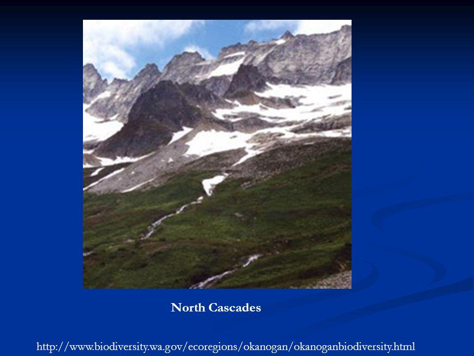 North Cascades http://www.biodiversity.wa.gov/ecoregions/okanogan/okanoganbiodiversity.html