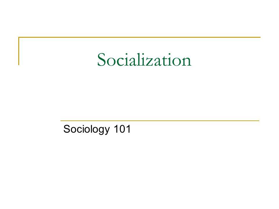 Socialization Sociology 101