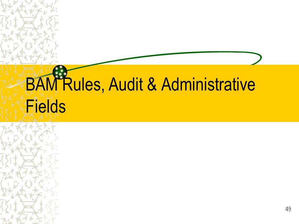 49 BAM Rules, Audit & Administrative Fields