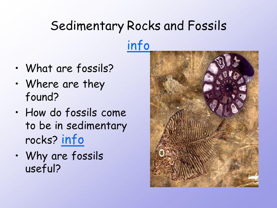 Sedimentary Rocks infoinfo LAYERS SQUASHED