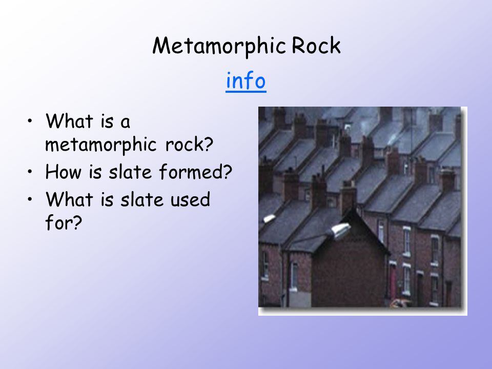 Sedimentary Rocks and Fossils info info What are fossils.