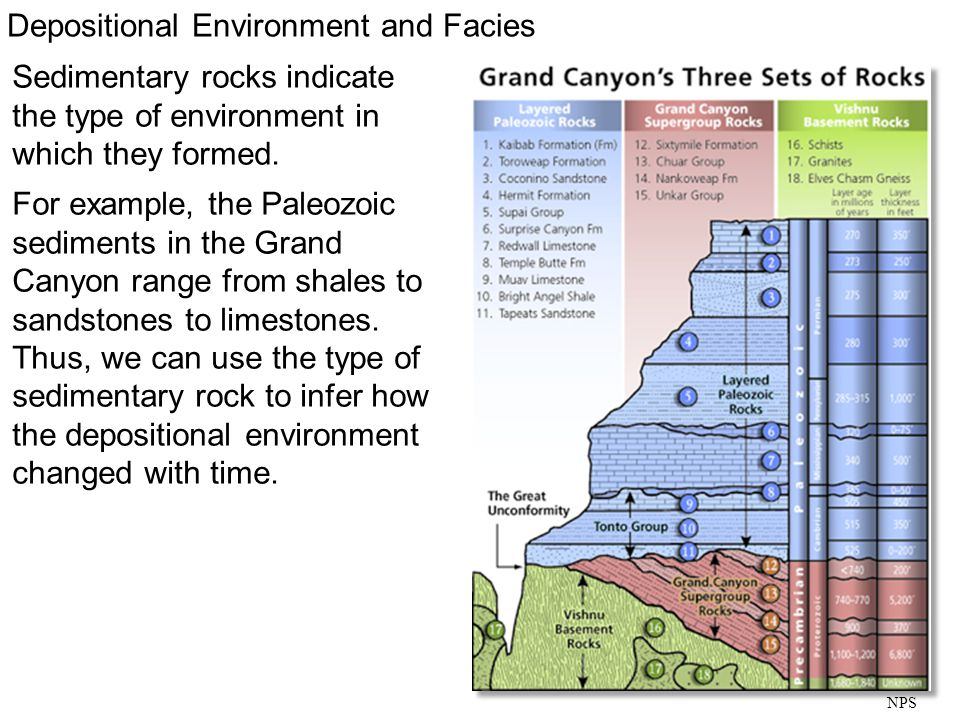 Sedimentary rocks indicate the type of environment in which they formed. For example, the Paleozoic sediments in the Grand Canyon range from shales to