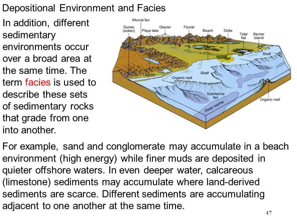 47 For example, sand and conglomerate may accumulate in a beach environment (high energy) while finer muds are deposited in quieter offshore waters. I