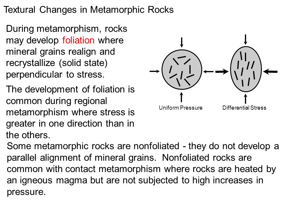 During metamorphism, rocks may develop foliation where mineral grains realign and recrystallize (solid state) perpendicular to stress. The development