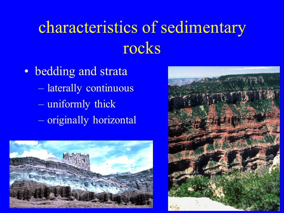 19 characteristics of sedimentary rocks bedding and strata –laterally continuous –uniformly thick –originally horizontal