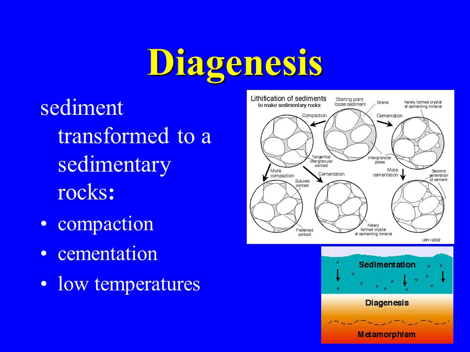 23 Diagenesis sediment transformed to a sedimentary rocks: compaction cementation low temperatures