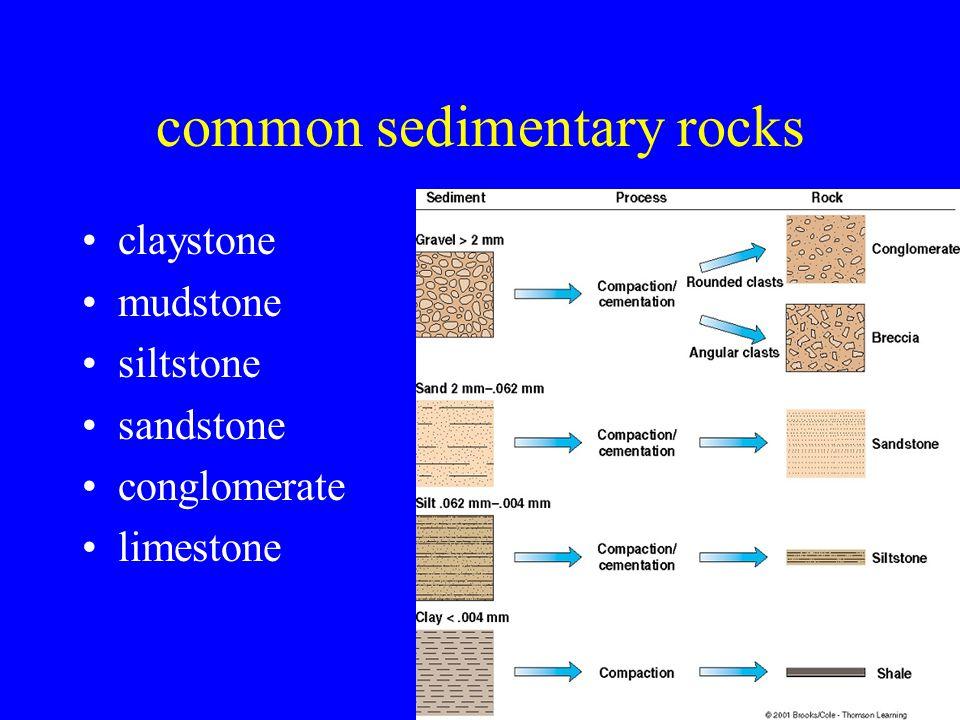 24 common sedimentary rocks claystone mudstone siltstone sandstone conglomerate limestone