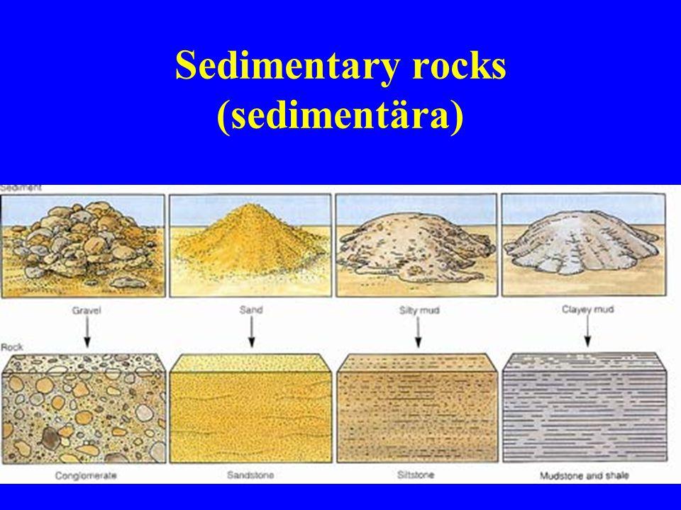 7 Sedimentary rocks (sedimentära)