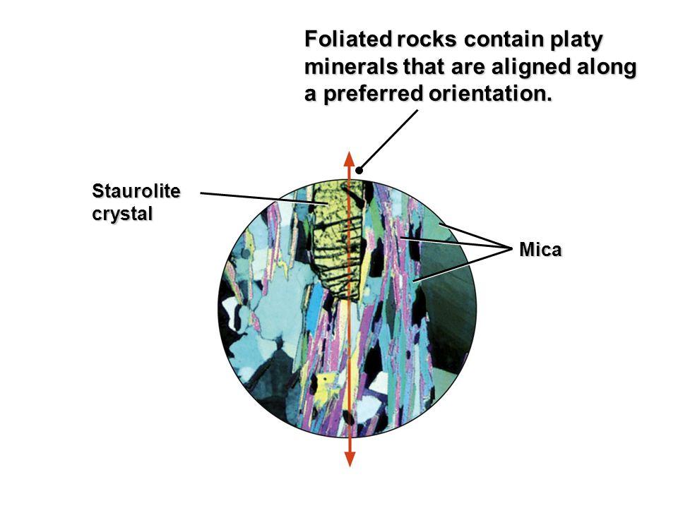 Staurolitecrystal Mica Foliated rocks contain platy minerals that are aligned along a preferred orientation.