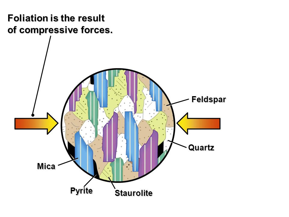 Mica Pyrite Staurolite Quartz Feldspar Foliation is the result of compressive forces.