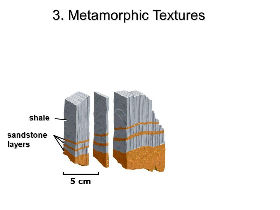 shale sandstonelayers 5 cm 3. Metamorphic Textures