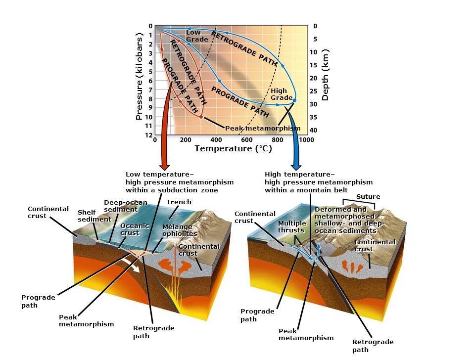 Temperature (°C) Depth (km) RETROGRADE PATH PROGRADE PATH Low Grade High Grade RETROGRADE PATH PROGRADE PATH Peak metamorphism Low temperature– high pressure metamorphism within a subduction zone Continental crust Shelf sediment Shelf sediment Deep-ocean sediment Deep-ocean sediment Oceanic crust Oceanic crust Trench Mélange ophiolites Mélange ophiolites Prograde path Peak metamorphism Retrograde path Continental crust Continental crust High temperature– high pressure metamorphism within a mountain belt Deformed and metamorphosed shallow- and deep- ocean sediments Deformed and metamorphosed shallow- and deep- ocean sediments Continental crust Continental crust Continental crust Multiple thrusts Multiple thrusts Prograde path Peak metamorphism Retrograde path Suture Pressure (kilobars)