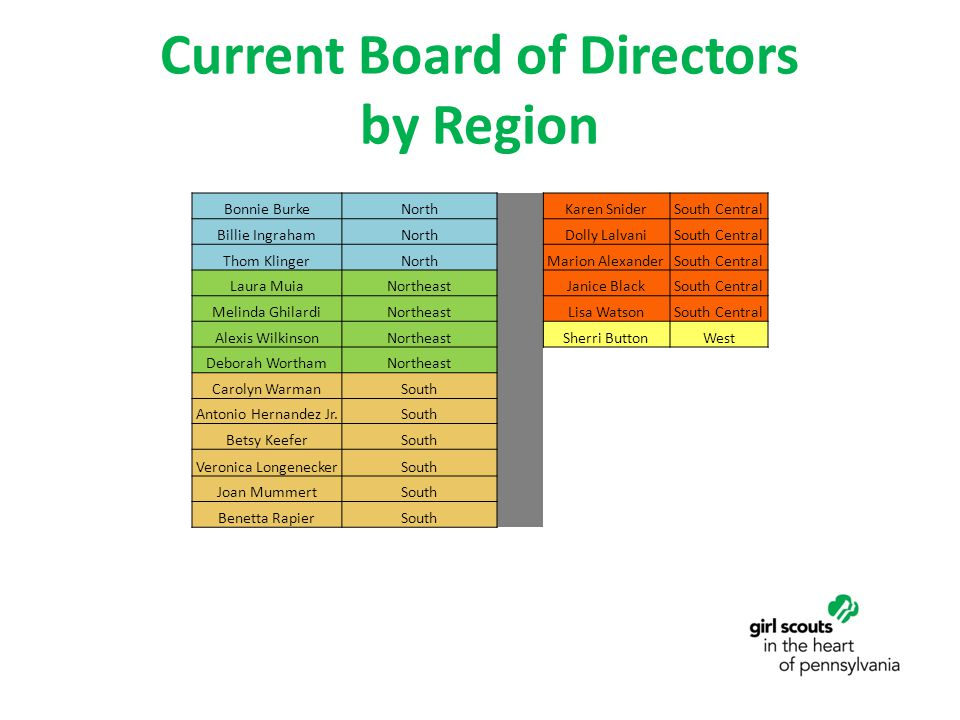 Current Board of Directors by Region Bonnie BurkeNorth Karen SniderSouth Central Billie IngrahamNorth Dolly LalvaniSouth Central Thom KlingerNorth Mar