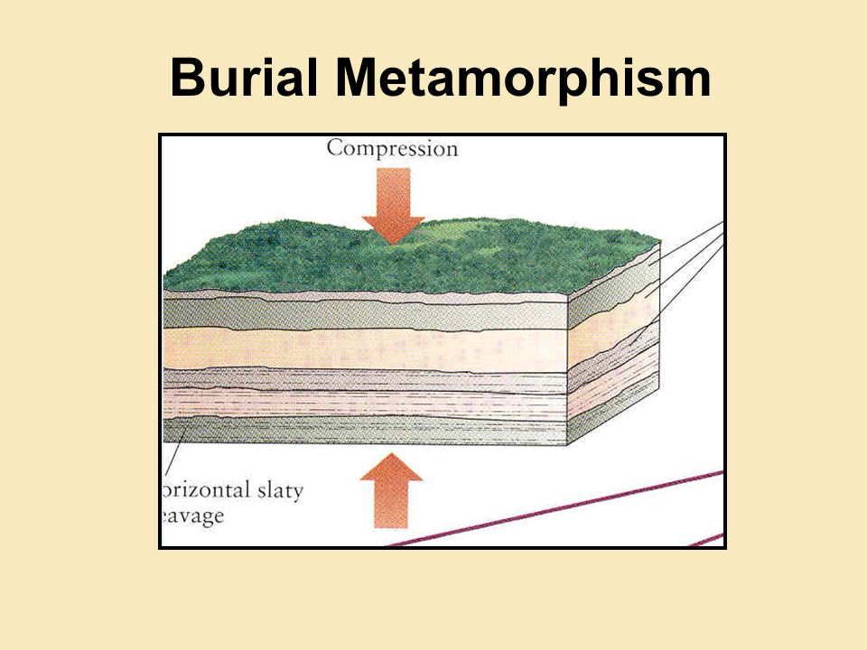 Burial Metamorphism