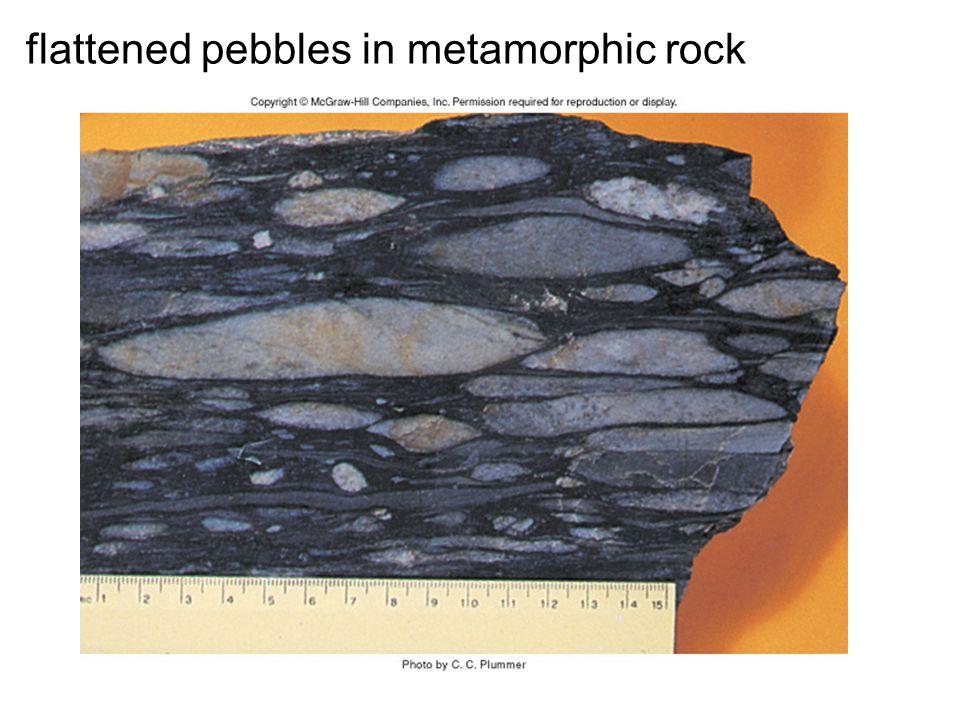 flattened pebbles in metamorphic rock