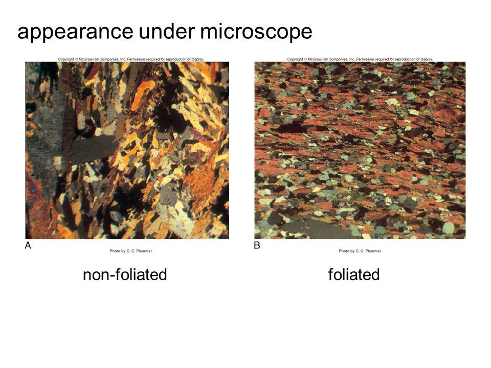 non-foliatedfoliated appearance under microscope