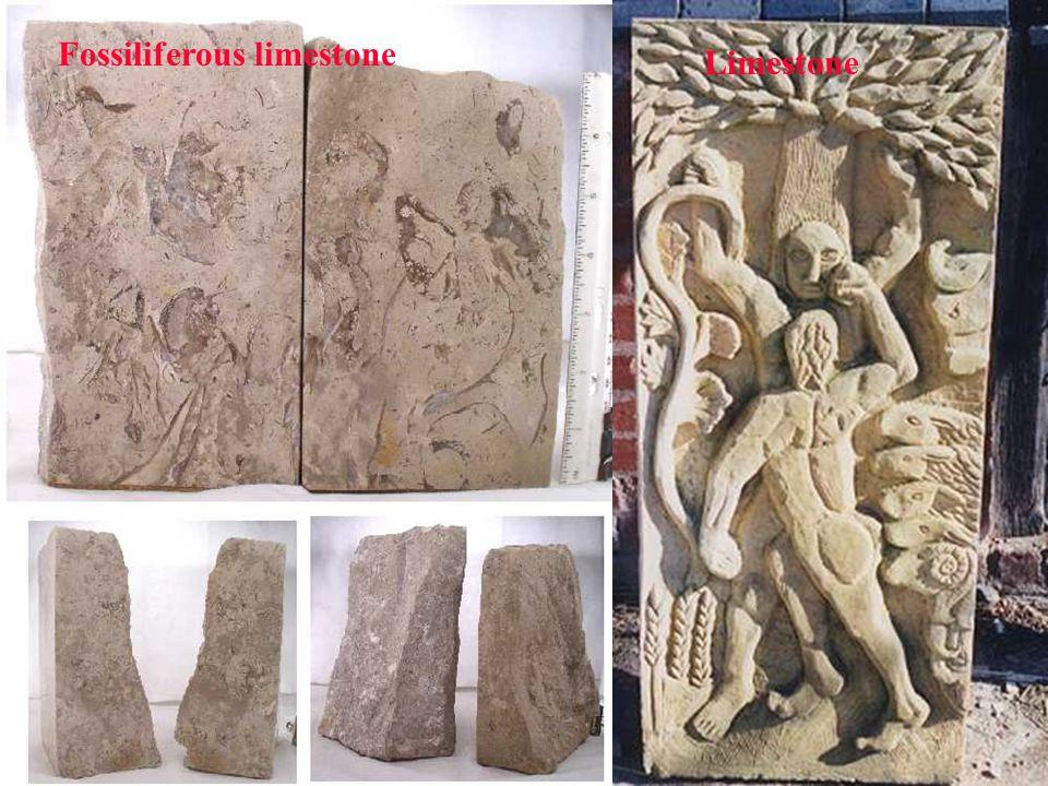 Fossiliferous limestone Limestone