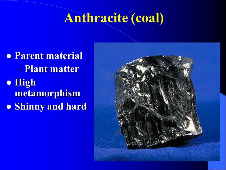 Anthracite (coal) Parent material Parent material – Plant matter High metamorphism High metamorphism Shinny and hard Shinny and hard