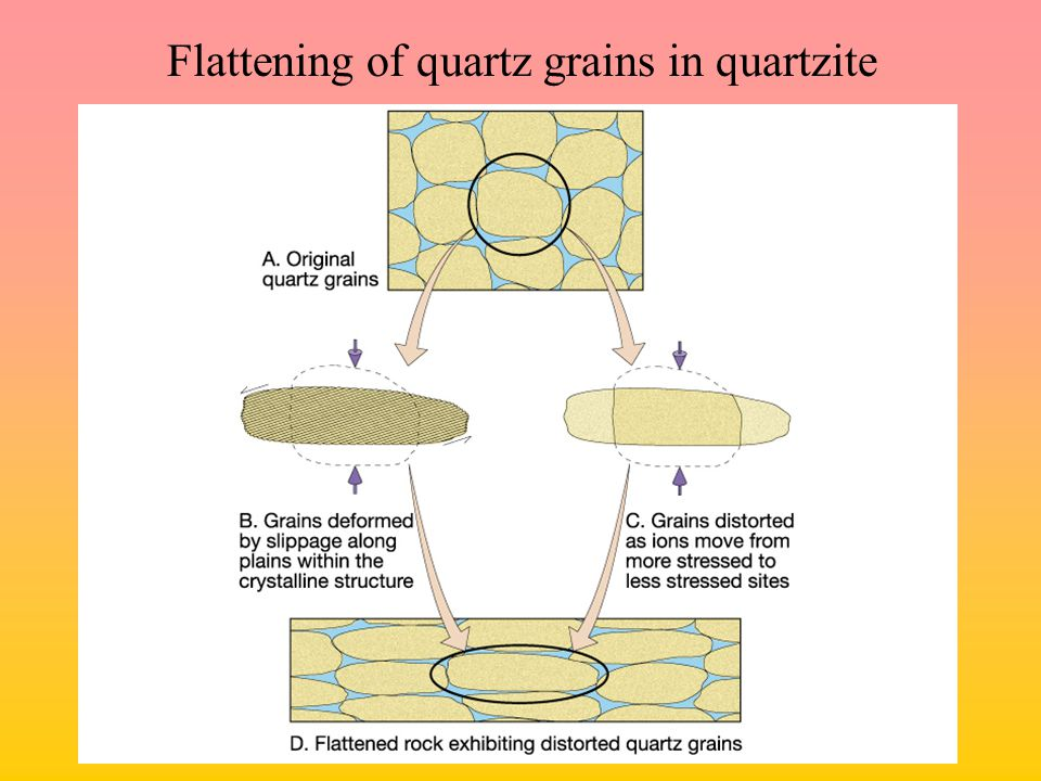 Flattening of quartz grains in quartzite
