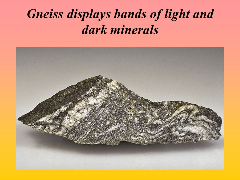 Gneiss displays bands of light and dark minerals