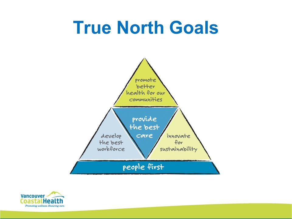 True North Goals