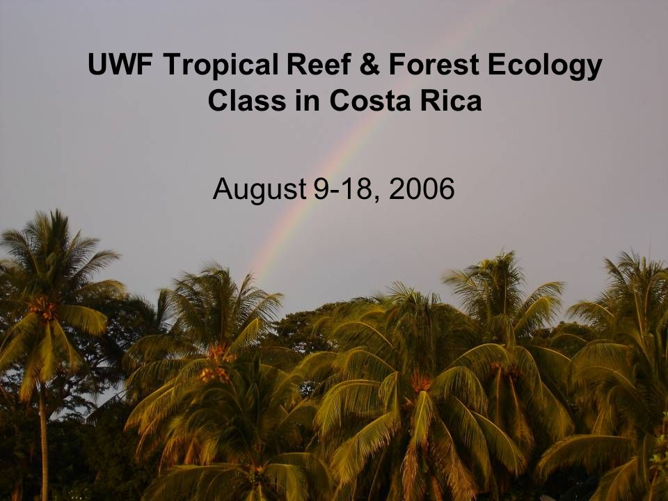 Class Layout Three weeks of lecture: Reef Ecology Tropical Dry Forest Ecology Tropical Rain Forest Ecology Two weeks in Costa Rica: Field trips morning through mid afternoon Lectures by local biologists before dinner Free time in the evening Variable Credit: 1 credit – Attend lectures, take exams 2 credits – Lecture, exams, field notebook 3 credits - Lecture, exams, field notebook, paper