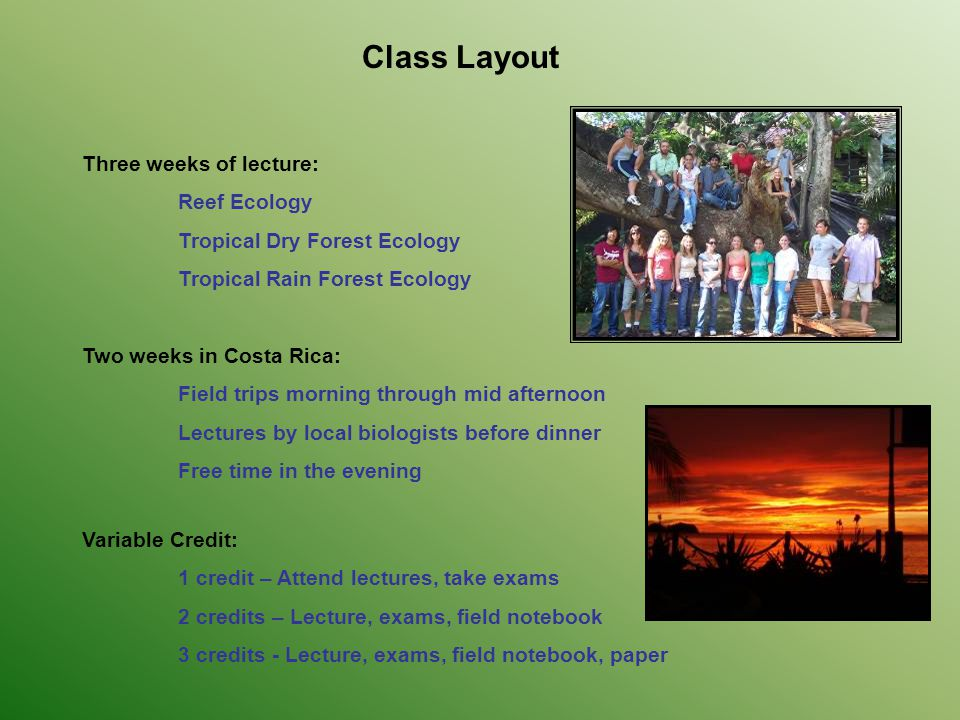 Class Layout Three weeks of lecture: Reef Ecology Tropical Dry Forest Ecology Tropical Rain Forest Ecology Two weeks in Costa Rica: Field trips mornin