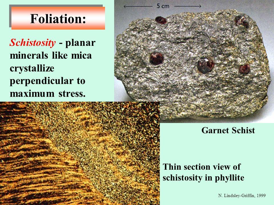 Schistosity - planar minerals like mica crystallize perpendicular to maximum stress. Foliation: N. Lindsley-Griffin, 1999 Garnet Schist Thin section v