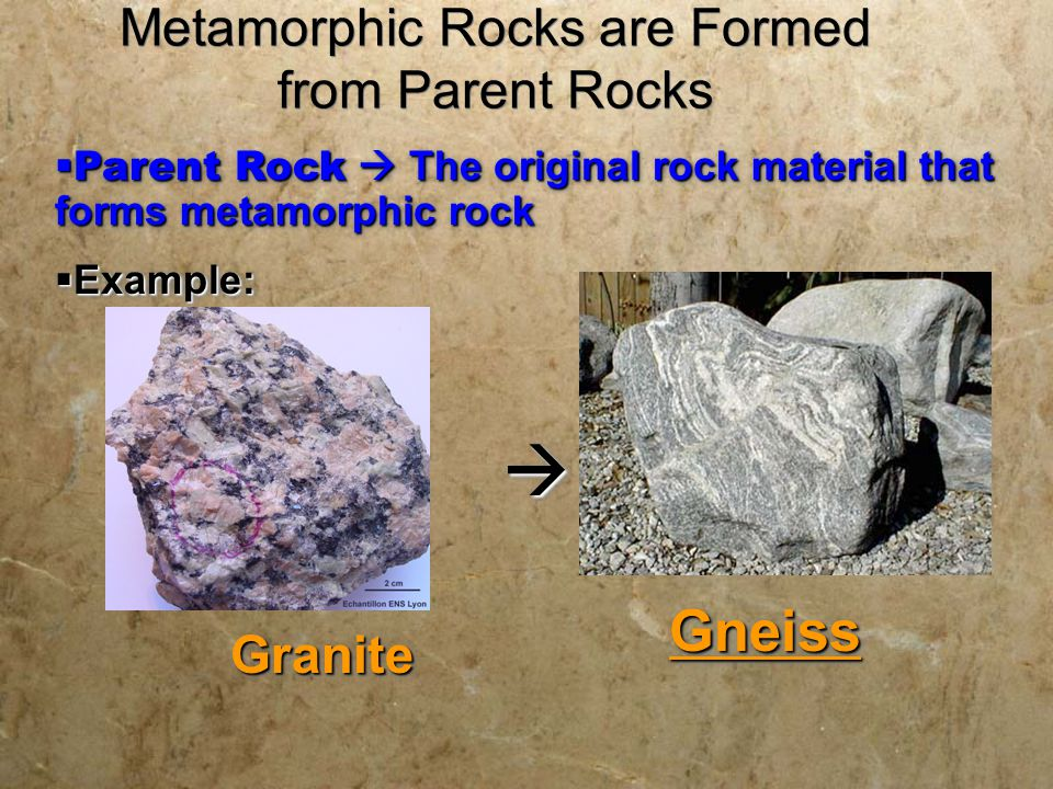 Metamorphic Rocks are Formed from Parent Rocks  Parent Rock  The original rock material that forms metamorphic rock  Example:  Parent Rock  The o