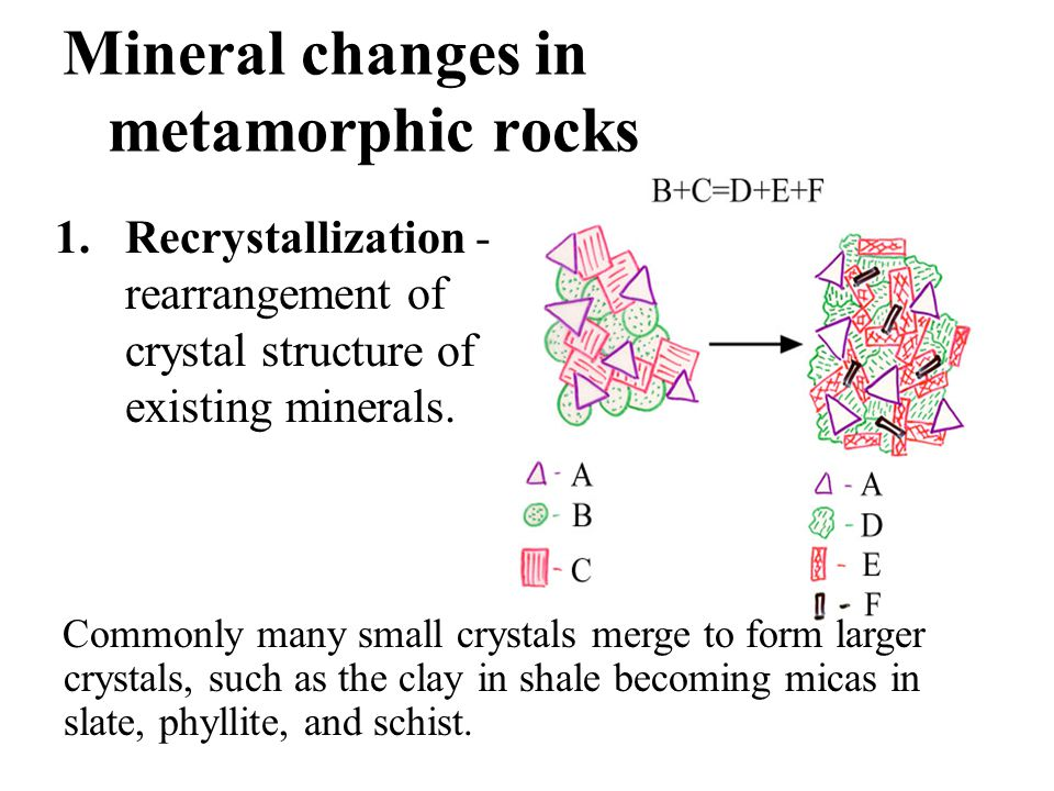 Mineral changes in metamorphic rocks 1.Recrystallization - rearrangement of crystal structure of existing minerals. Commonly many small crystals merge
