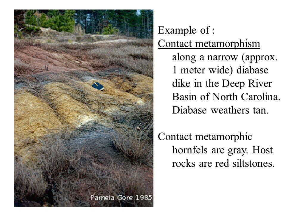 Example of : Contact metamorphism along a narrow (approx. 1 meter wide) diabase dike in the Deep River Basin of North Carolina. Diabase weathers tan.