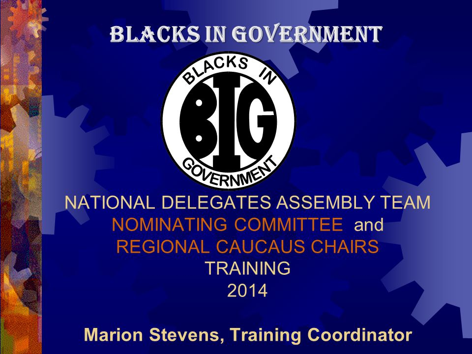 NATIONAL DELEGATES ASSEMBLY TEAM NOMINATING COMMITTEE and REGIONAL CAUCAUS CHAIRS TRAINING 2014 Marion Stevens, Training Coordinator BLACKS IN GOVERNMENT
