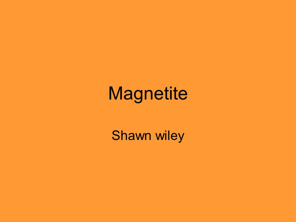 Magnetite Shawn wiley