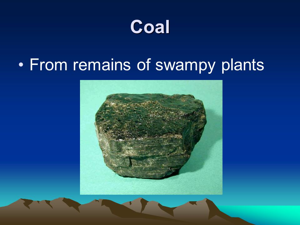 Coal From remains of swampy plants
