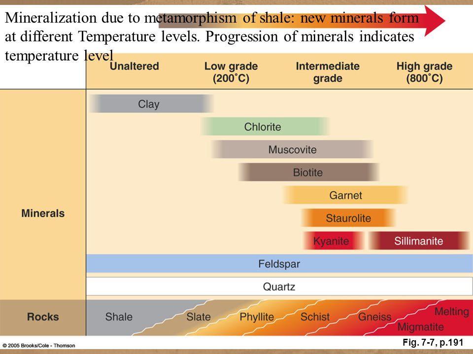 Mineralization due to metamorphism of shale: new minerals form at different Temperature levels. Progression of minerals indicates temperature level Fi