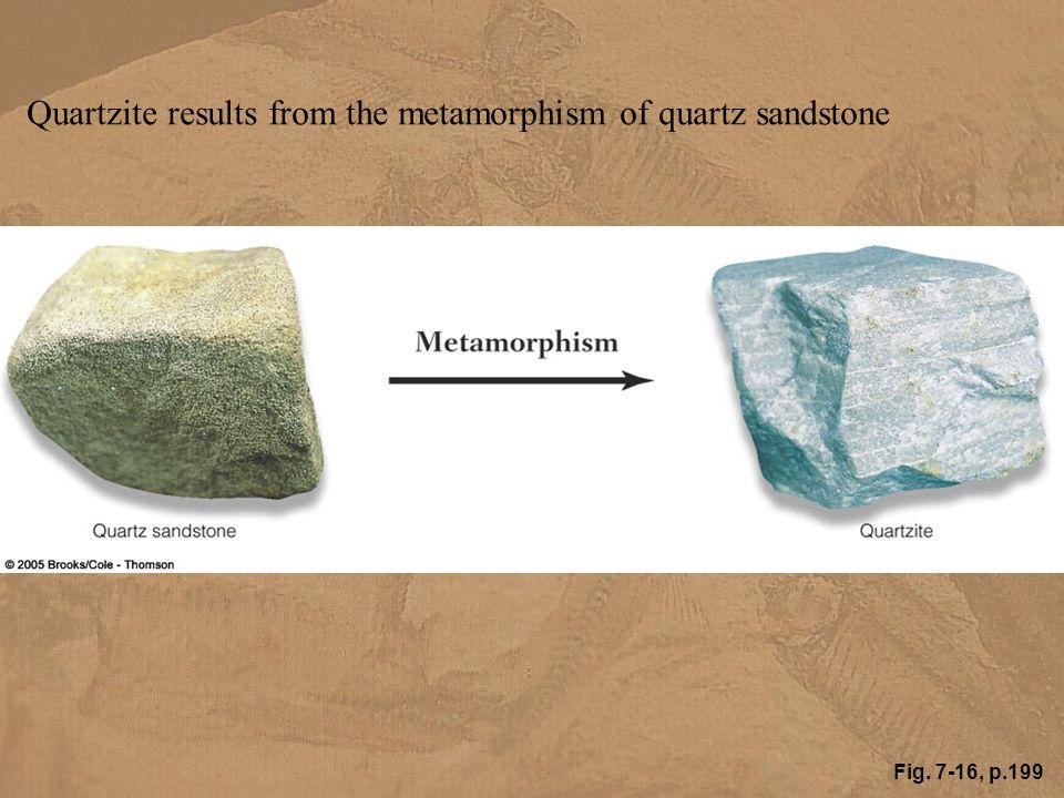 Fig. 7-16, p.199 Quartzite results from the metamorphism of quartz sandstone