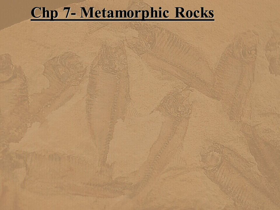 Chp 7- Metamorphic Rocks