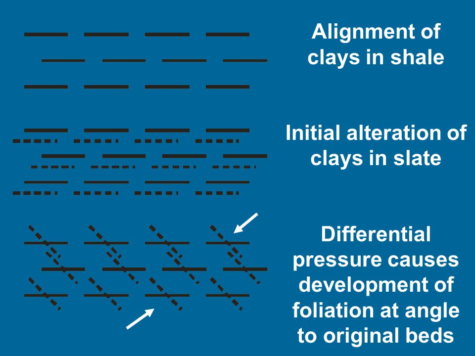 Alignment of clays in shale Initial alteration of clays in slate Differential pressure causes development of foliation at angle to original beds