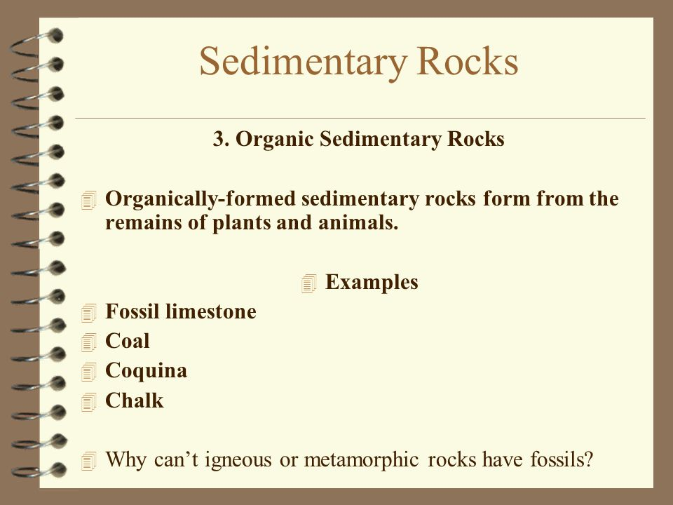 3. Organic Sedimentary Rocks 4 Organically-formed sedimentary rocks form from the remains of plants and animals. 4 Examples 4 Fossil limestone 4 Coal