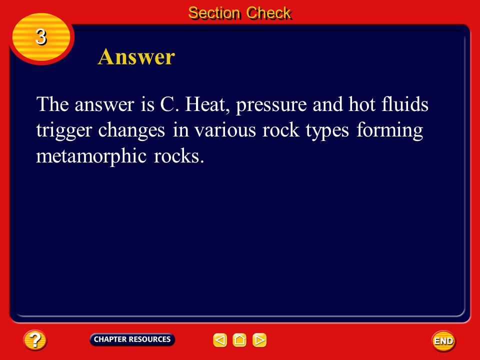 Section Check 3 3 Question 1 What type of rocks can form from any type of rock? A. igneous B. intrusive C. metamorphic D. sedimentary