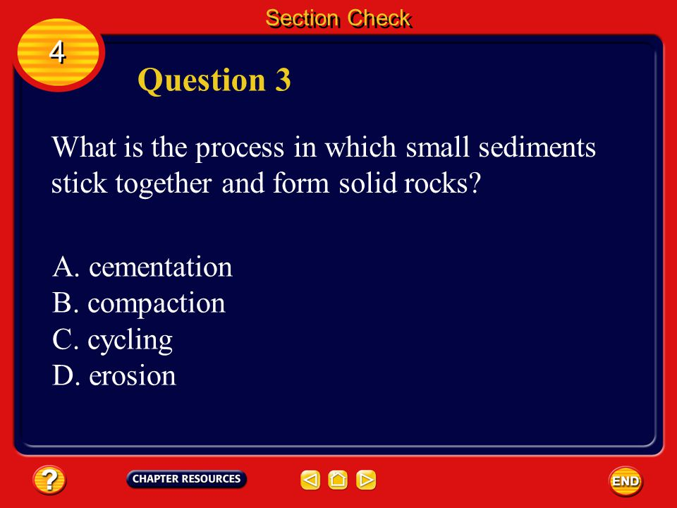 Section Check 4 4 Answer The answer is C. Shale forms from clay sediments.
