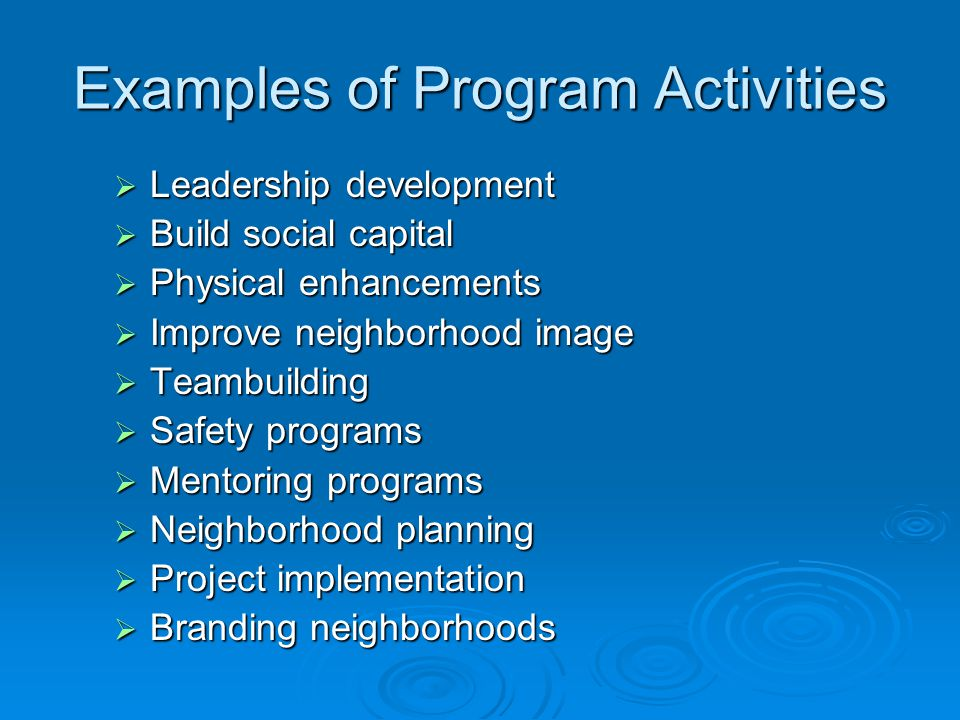 Examples of Program Activities  Leadership development  Build social capital  Physical enhancements  Improve neighborhood image  Teambuilding  Safety programs  Mentoring programs  Neighborhood planning  Project implementation  Branding neighborhoods