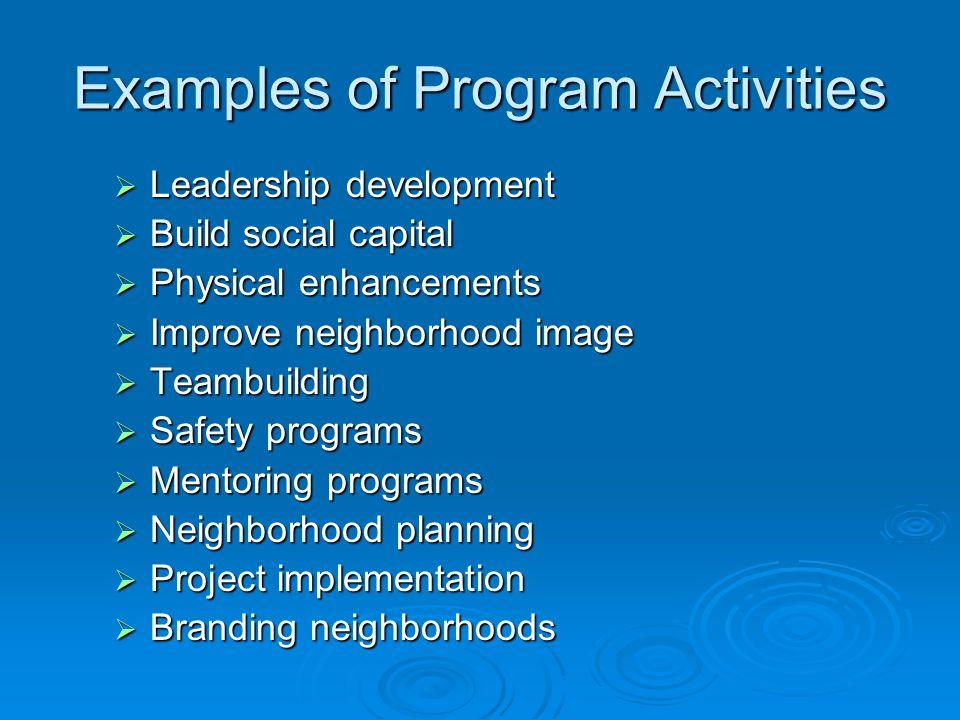 Examples of Program Activities  Leadership development  Build social capital  Physical enhancements  Improve neighborhood image  Teambuilding  S