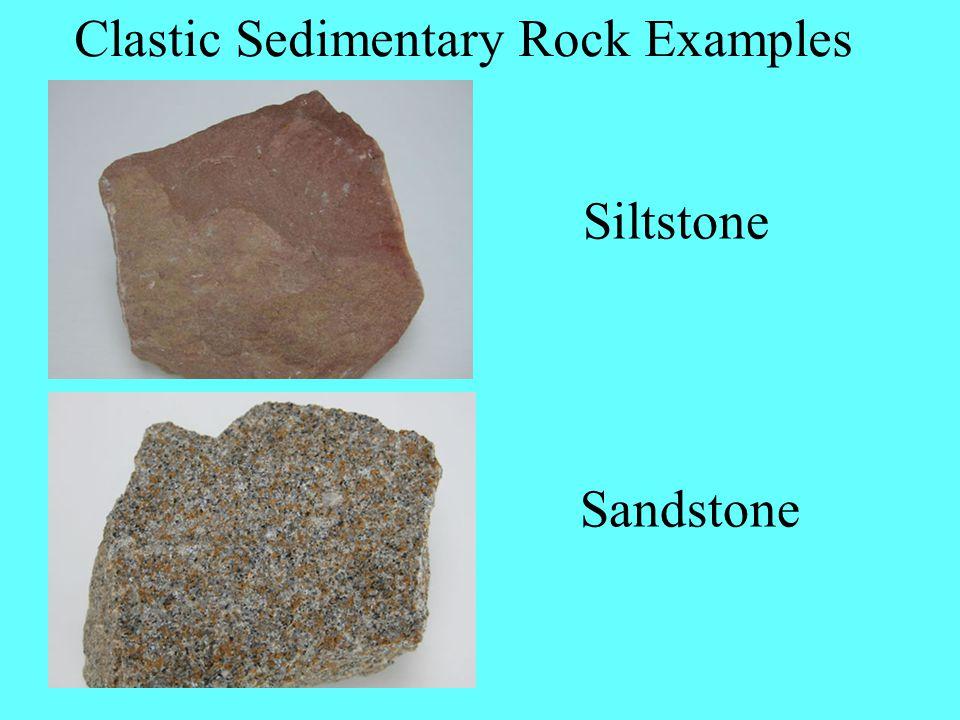 Clastic Sedimentary Rock Examples Siltstone Sandstone