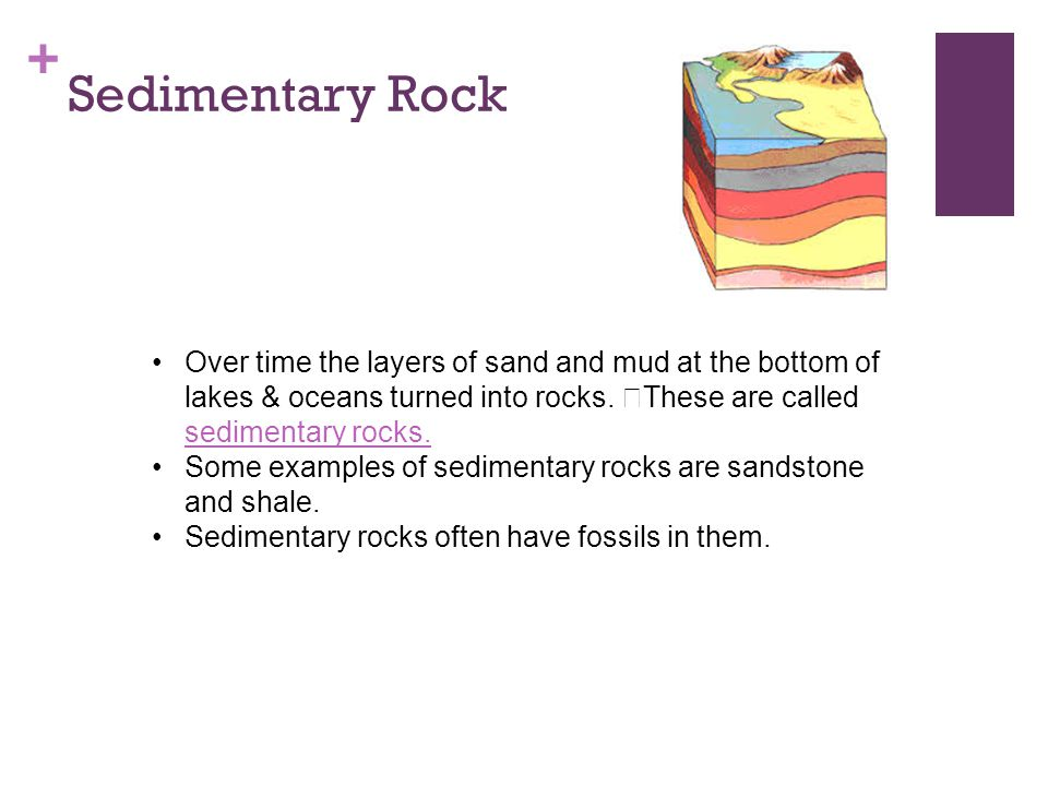 + Sedimentary Rock Over time the layers of sand and mud at the bottom of lakes & oceans turned into rocks. These are called sedimentary rocks. sedimen
