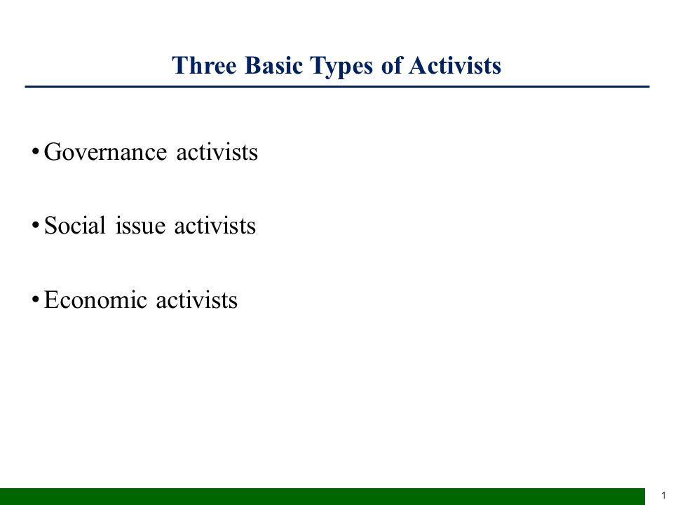 Three Basic Types of Activists Governance activists Social issue activists Economic activists 1